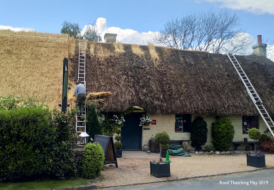 roof thatching may 2019
